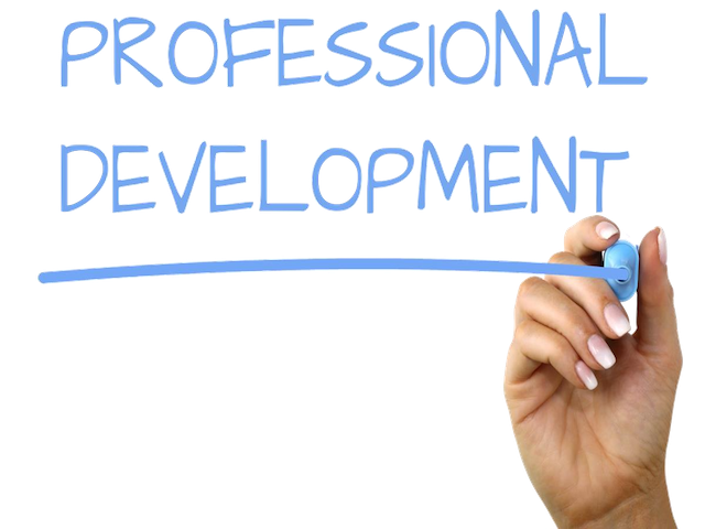 Professional Development February 2020